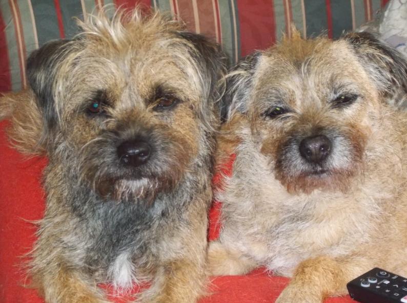 Hettie and Dillie