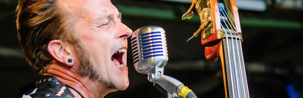 Farmer Phil's Festival Singer