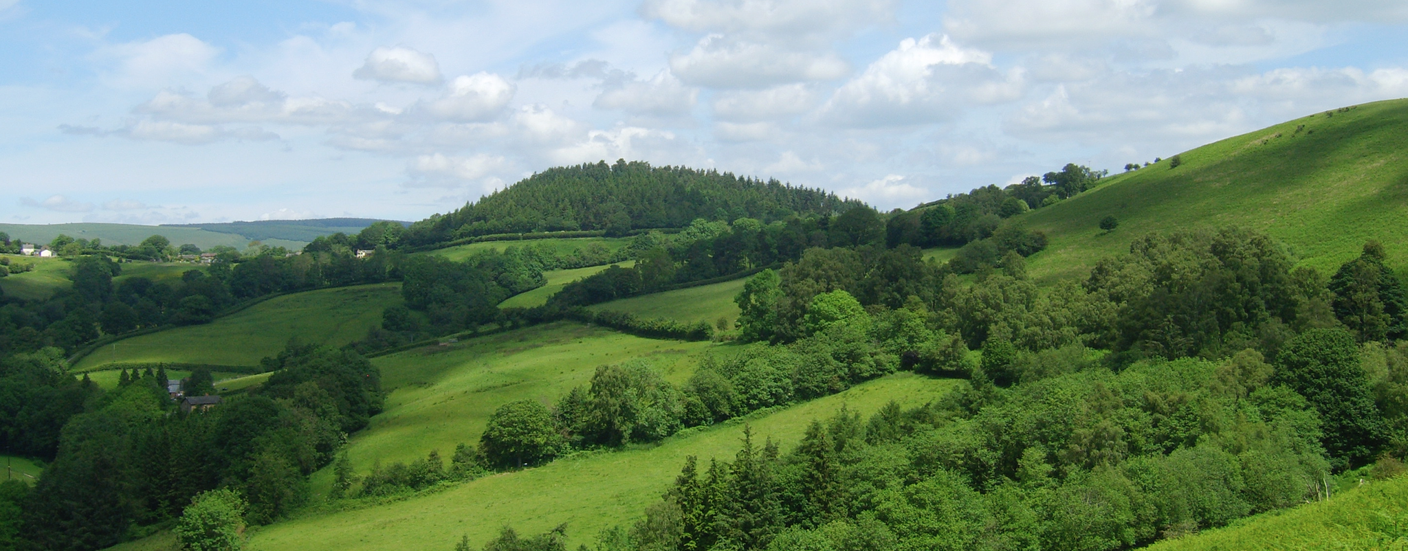 The verdant green countryside of South Shropshire in Spring